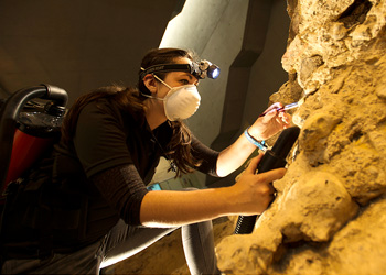Chichester museum conservation
