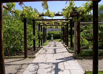 Garden Trail - Fishbourne Roman Palace